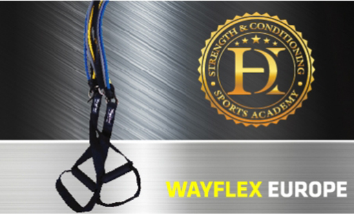 Wayflex.ro